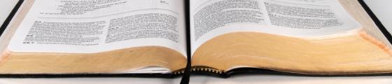 La Biblia y el Lider